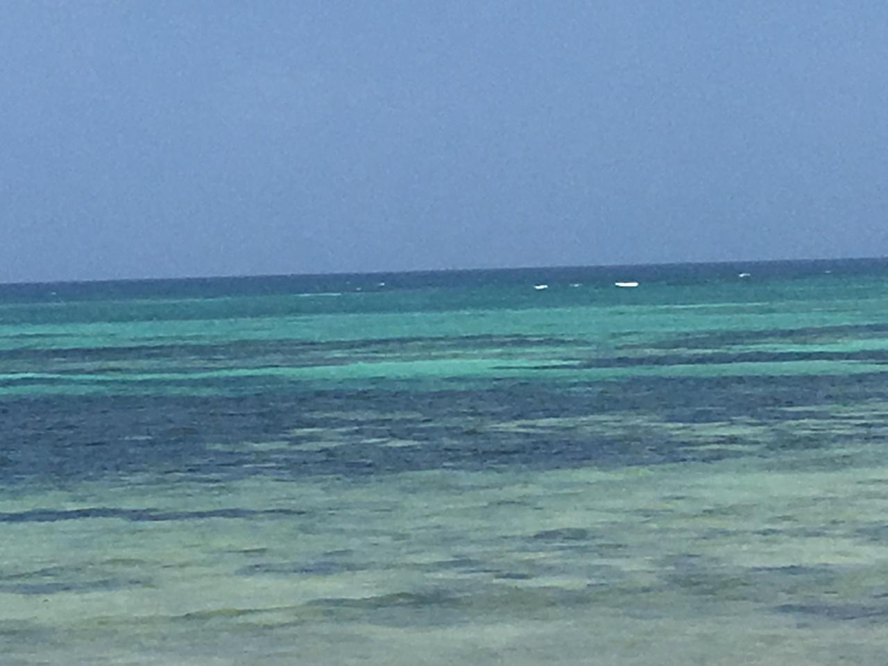 Ode à Zanzibar