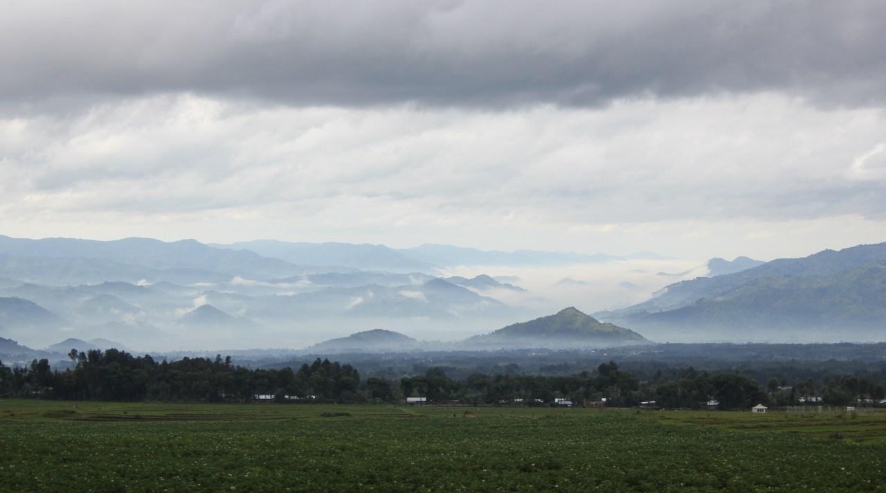 Ma plus belle histoire c'est vous : les gorilles dans le pays des brumes – Le Rwanda – avril2011