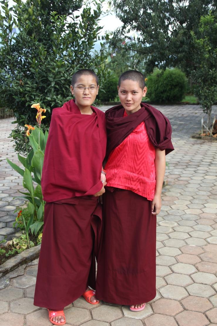 Bouthan n°2 et Nepal 1 2010 756