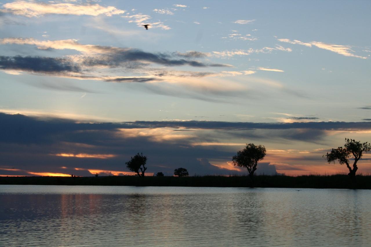 Botswana 3 chobe river et savute nov 2008 271
